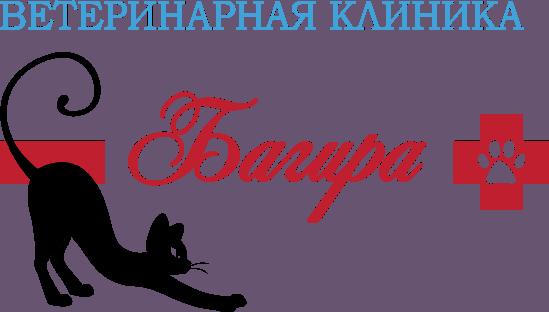 """О ветеринарной клинике """"Багира"""" в Бишкеке"""